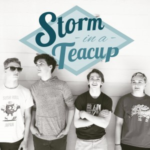 Storm in a Teacup - Alternative Band in Grinnell, Iowa