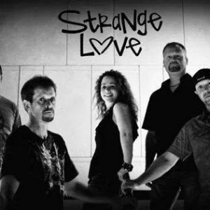 Strangelove Band - Wedding Band in Cincinnati, Ohio