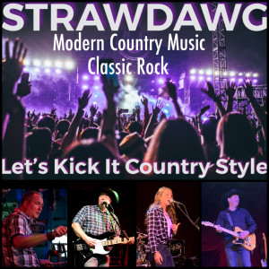 Strawdawg - Country Band in Palatine, Illinois