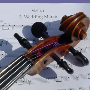String Music - String Quartet / Violinist in San Antonio, Texas
