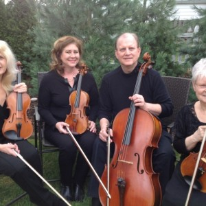 Strings of Choice - String Quartet / Wedding Entertainment in Toledo, Ohio