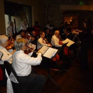 Strings of the Sonoran, Inc. - Classical Ensemble / Violinist in Casa Grande, Arizona