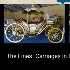 Sugar Creek carriages - Horse Drawn Carriage in Nashville, Tennessee