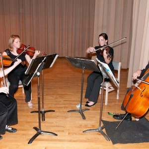 SUMMIT Strings - Classical Ensemble / String Quartet in Purlear, North Carolina