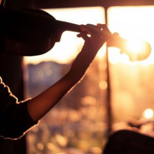 Sunrise City Strings - Acoustic Band in Vero Beach, Florida