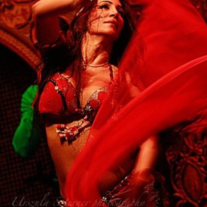 Surayah, Chicago's Belly Dancer! - Belly Dancer in Chicago, Illinois