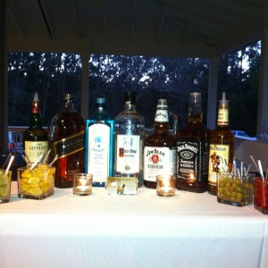Stock the Bar - Bartender / Wedding Services in Port St Joe, Florida