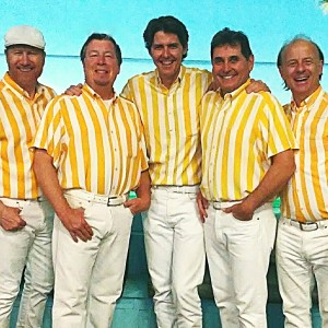 Surfin': The Beach Boys Tribute - Beach Boys Tribute Band / A Cappella Group in Los Angeles, California