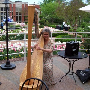 Susan Ottzen classical and jazz harpist - Harpist in Atlanta, Georgia
