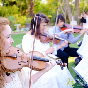 Sweetwater Strings - String Trio / Violinist in Scottsdale, Arizona