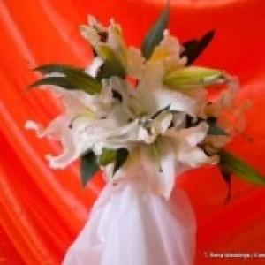 T. Rena Weddings / Events Inc.