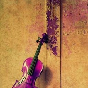 Talented Classical Violinist - Violinist in Santa Fe, New Mexico