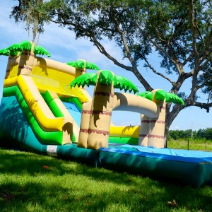 Tampa Inflatables