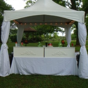 Tent-Sational Events - Tent Rental Company / Party Rentals in Milledgeville, Georgia