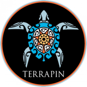 Terrapin - Grateful Dead Tribute Band in Cos Cob, Connecticut