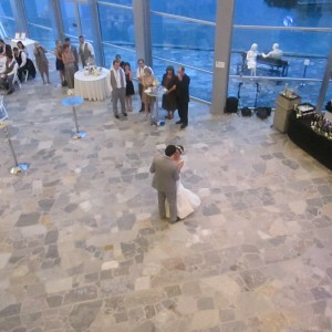 Terry's DJ Services - Wedding DJ / Wedding Entertainment in Chattanooga, Tennessee