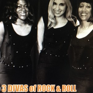 The 60's and 70's Dance Band - Oldies Tribute Show in New Hyde Park, New York