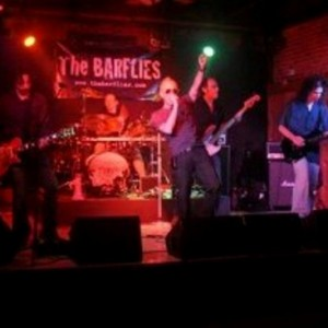 The Barflies - Rock Band in Youngstown, Ohio