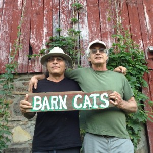 The Barn Cats - Americana Band in Laurens, New York