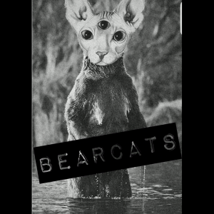 The Bearcats - Punk Band in Stewartstown, Pennsylvania
