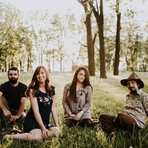 The Chickadee Sermon - Folk Band in Champaign, Illinois
