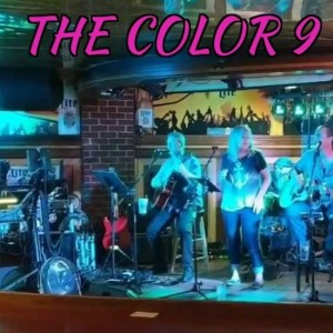The Color 9 - Acoustic Band in Canton, Ohio
