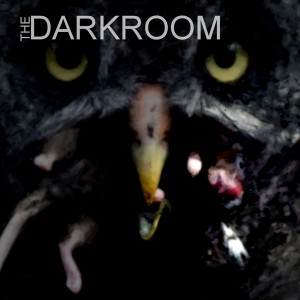 The Darkroom - Alternative Band in Kailua Kona, Hawaii