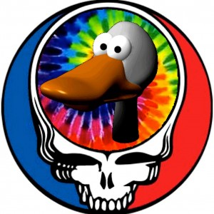 The Dead Ducks Band - Rock Band in San Jose, California