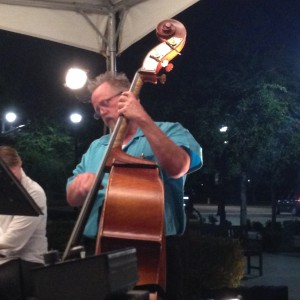 The Denny Hess Trio - Jazz Band / Holiday Party Entertainment in Raleigh, North Carolina