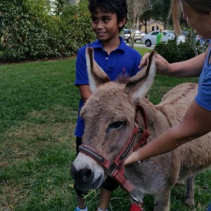 The Edge Adventure's Critter Caravan - Petting Zoo in Parkland, Florida