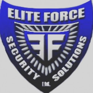 The Elite Force