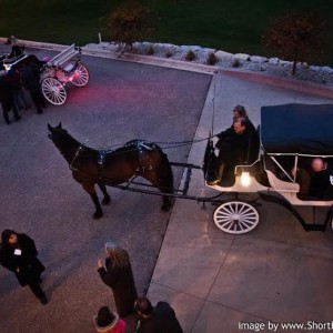 The Enchanted Carriage - Horse Drawn Carriage / Holiday Party Entertainment in Eagle, Wisconsin