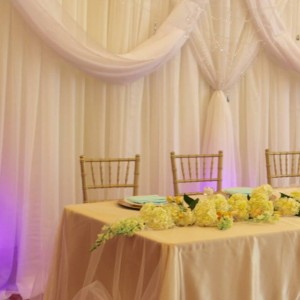 The Fabulous Event People - Event Planner / Wedding Planner in Milpitas, California