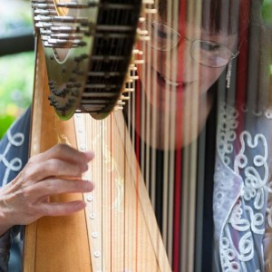 The Gold Harp - Laurie Galster - Harpist in Phoenix, Arizona