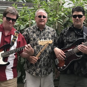 The Groove Daddies - Cover Band / Corporate Event Entertainment in Toledo, Ohio