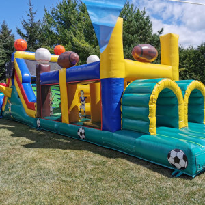 The Kangaroo's Castles - Party Inflatables / Family Entertainment in Mississauga, Ontario
