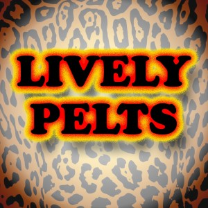 The LIVELY PELTS - Christian Band in Detroit, Michigan