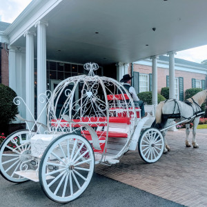 The Lone Star Carriage Co. of Jefferson TX - Horse Drawn Carriage in Jefferson, Texas