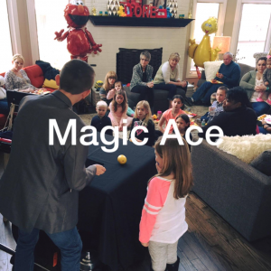 The Magic Ace - Magician / Holiday Party Entertainment in Lockport, Illinois