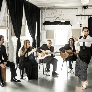The Martin Metzger Flamenco Ensemble - Flamenco Group / Latin Jazz Band in Chicago, Illinois