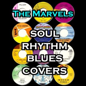 The Marvels- Soul, Rhythm, and Blues Covers - Tribute Band in Toronto, Ontario