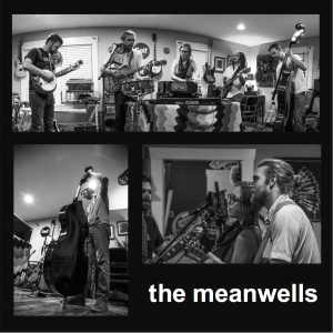 The Meanwells - Americana Band in Kansas City, Missouri