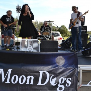 The Moon Dogs