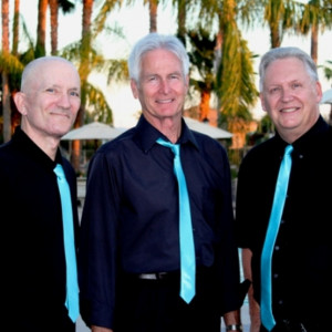 The Moonlighters Band - Oldies Music in Mesa, Arizona