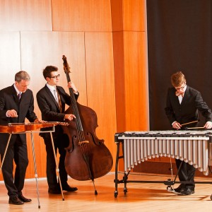 The Neighborhood Trio - Jazz Band / Wedding Band in Minneapolis, Minnesota