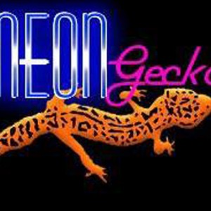 The Neon Geckos - Cover Band in Bonsall, California