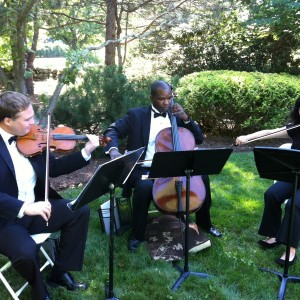 The New York String Ensemble - String Quartet in Brooklyn, New York