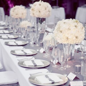The Ocassion EPS - Event Planner / Wedding Planner in Raleigh, North Carolina