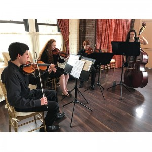 The Orpheus Ensemble  - String Quartet in Wading River, New York