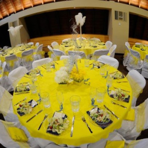 The Party Redux - Party Rentals / Backdrops & Drapery in Harrisburg, North Carolina